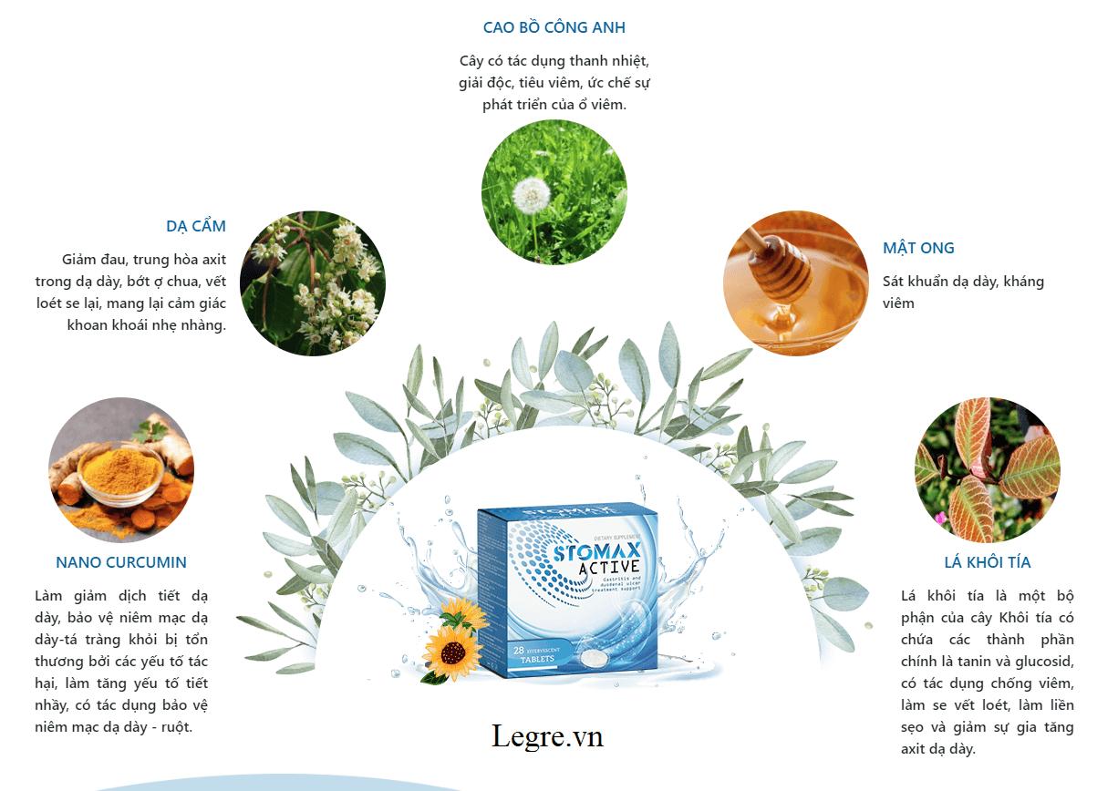 Stomax Active được chiết xuất hoàn toàn từ thảo dược thiên nhiên